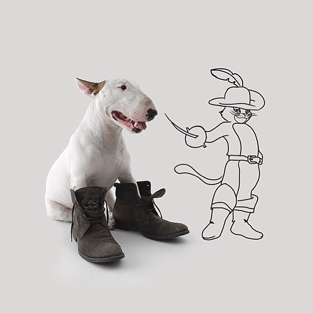 Dog & Puss In Boots Photograph // Funny And Cool Dog Drawings & Photo Illustrations, Jimmy Choo Bull Terrier by Rafael Mantesso