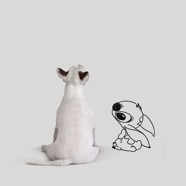 Dog Lilo & Stitch Photograph // Funny And Cool Dog Drawings & Photo Illustrations, Jimmy Choo Bull Terrier by Rafael Mantesso