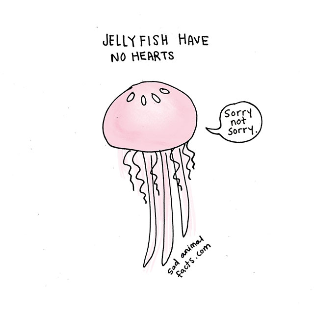 Sad Animal Facts About Jellyfish // Best Tumblr Illustration Blogs & Art Portfolio