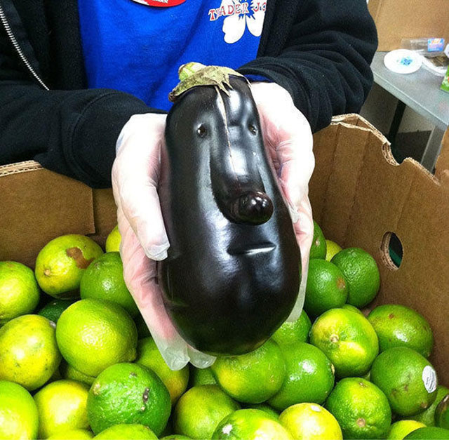 Eggplant Face Photograph // Funny Exotic Fruits And Vegetables Photos