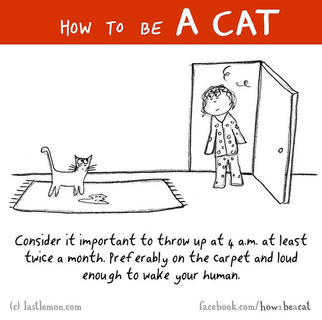 How To Be A Cat Illustrations