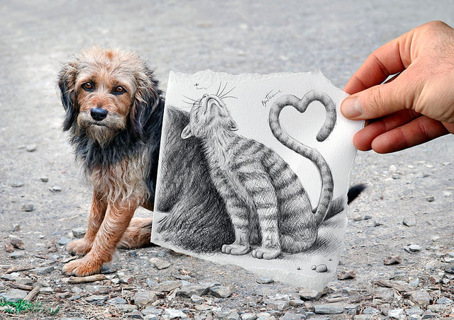 Dog & Cat Photos // Pencil Photography Drawing, Pencil vs Camera Ideas by Ben Heine