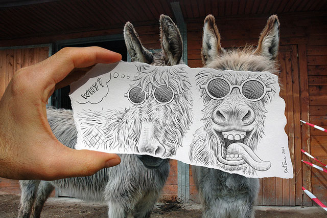 Two Donkeys Photo // Pencil Photography Drawing, Pencil vs Camera Ideas by Ben Heine
