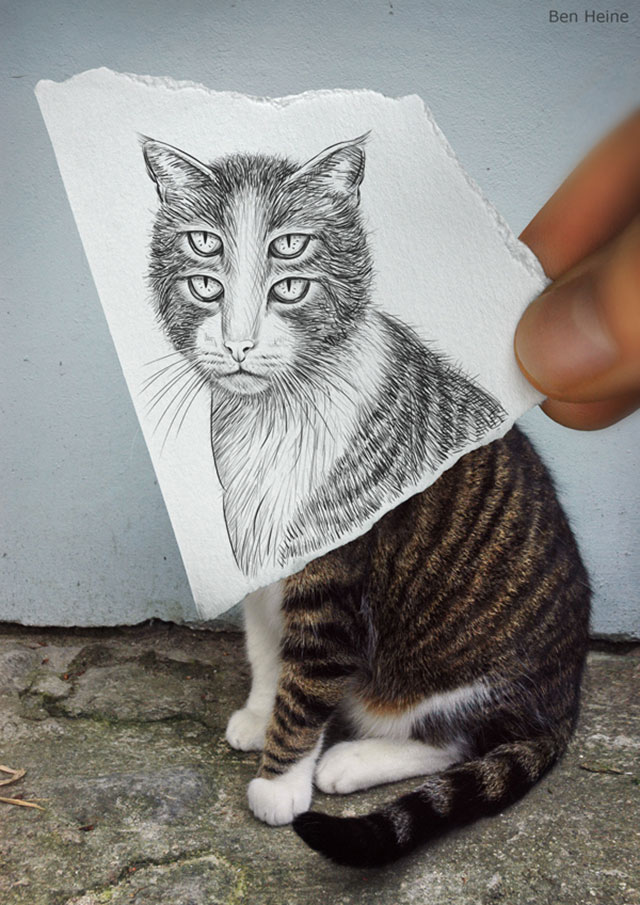 4 Eyed Cat Photo // Pencil Photography Drawing, Pencil vs Camera Ideas by Ben Heine