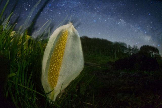 Stunning Night Sky Shots & Photography