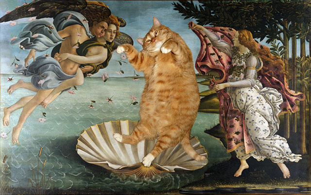 Botticelli, The Birth of Venus | Fat Orange Ginger Cat Paintings Photobombing Famous Masterpieces