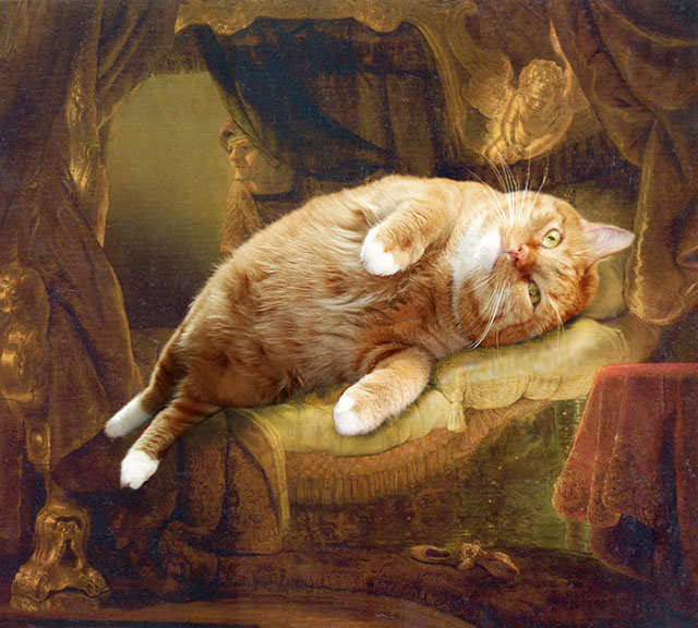 Rembrandt, Danae | Fat Orange Ginger Cat Paintings Photobombing Famous Masterpieces
