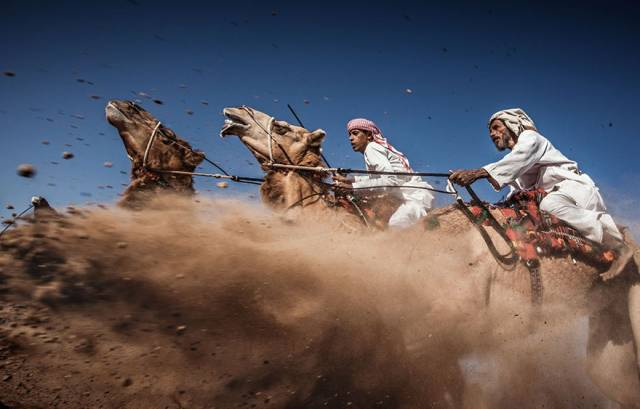 3rd Place Winner: Camel Ardah, Camel Racing | 10 Best Winners From The National Geographic Traveler Photo Contest 2015