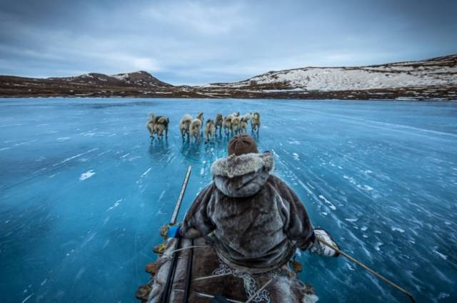 Sledding In Greenland | 10 Best Photographs Ever Taken Without Photoshop