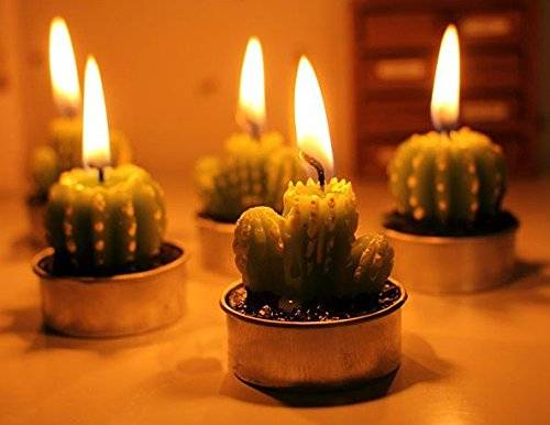 Succulent Green Cactus Candles At Night // 10 Cool & Creative Candle Designs For Love, Romance & Home Decor