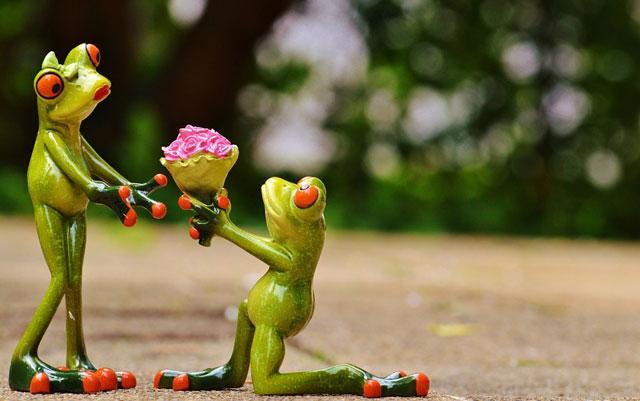 60 UNIQUE Creative Marriage Proposals You Couldn't Say No To Beauteous Unique Pics