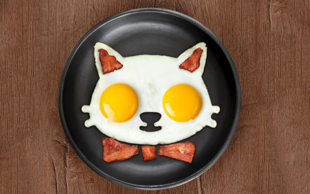 Egg Character Design Ideas : Creative egg molds for fried boiled eggs that you really need