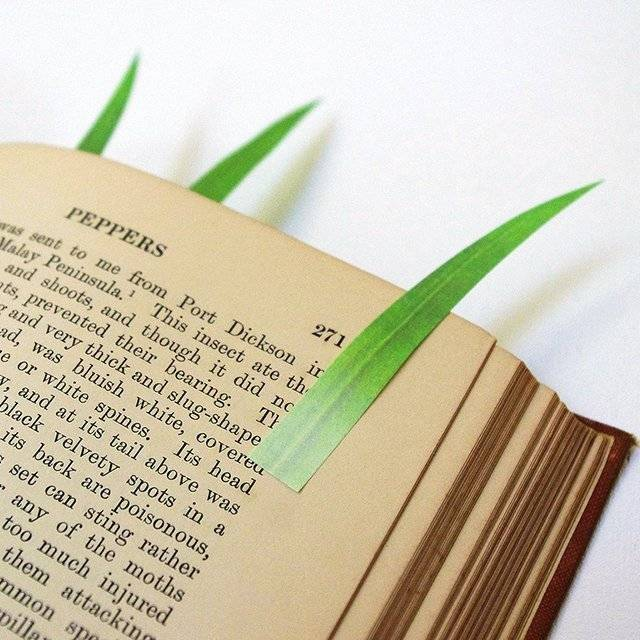 Cool Green Marker Grass Sticky Notes // 10 FUN & Cool Sticky Post It Notes That Will Make You Want To Remember Everything
