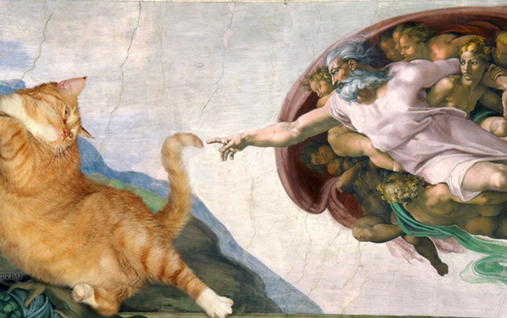Funny Cat Artist