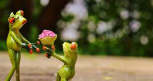 10 Unique & Creative Marriage Proposals That Will Surprise You